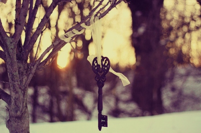 beautiful-black-key-nature-photo-photography-favim-com-96375